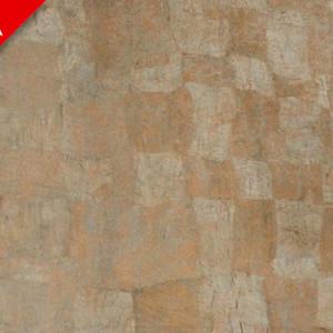 Марсианский бронзовый 0063 luc