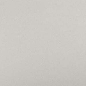 Белый 1110/E